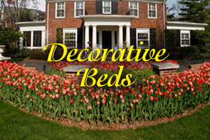 Decorative Beds photo