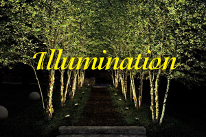 Illumination photo